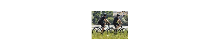 Vente VTC - Global vélo